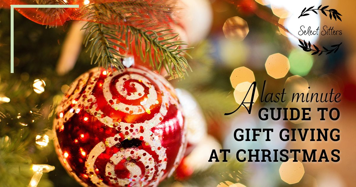 Our christmas gift guide on giving gifts to children select sitters a last minute guide to gift giving at christmas for the kids with select sitters negle Images